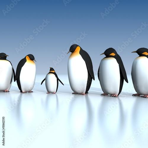 Foto-Schiebevorhang (ohne Schiene) - Fun penguins (von ArchMen)