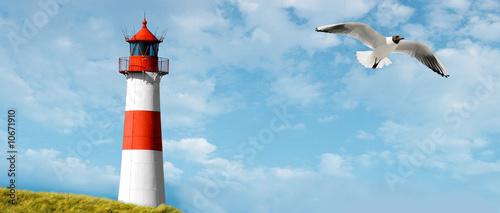 Leuchtturm Motiv an der Ostseeküste mit Möwe