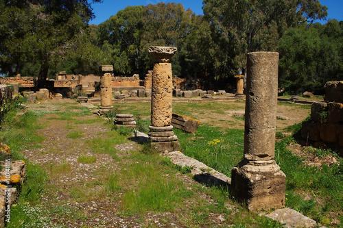 Poster Algérie Columns in Tipasa, Algeria