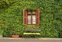 Empty Bench Against Wall Of Ivy, Vintage Shot Of Italian House