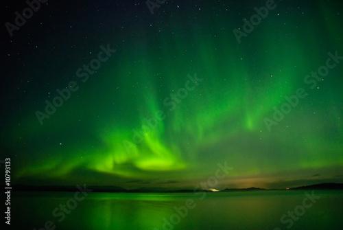Fotografia, Obraz  Arctic siyante above a lake