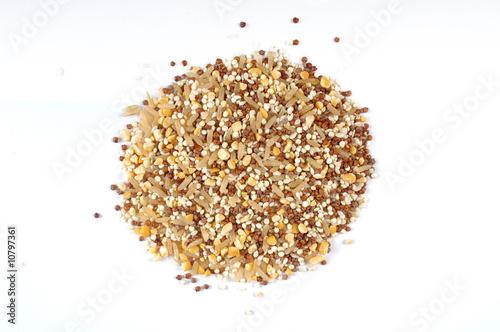 Photo  quinoa