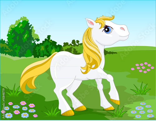 Poster Pony White Horse. Vector illustration