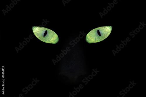 Poster Puma cat eye in the dark