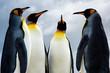 4 King Penguins