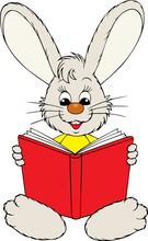 Bunny Reading The Red Book
