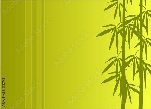 Bambus Illustration