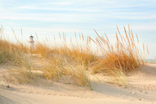Beach In New Buffalo, Michigan