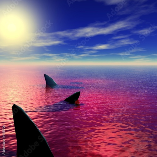 Photo ailerons de requins dans une mer de sang