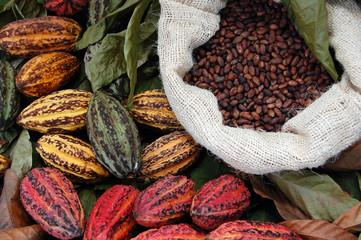 Panel Szklany Do cukierni Cocoa