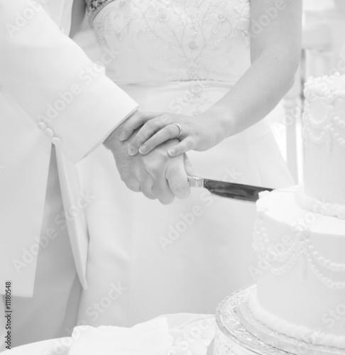 Cutting The Cake Canvas-taulu