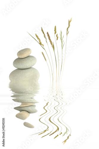 Fototapety, obrazy: Zen Beauty
