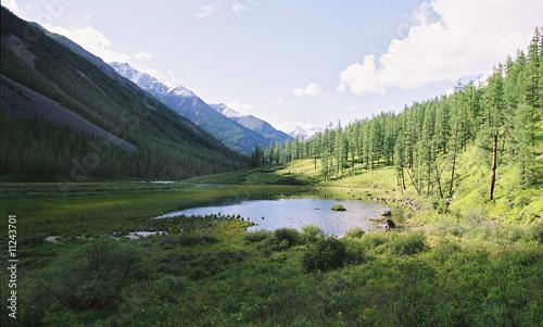 Poster Rivière de la forêt The Altay landscape