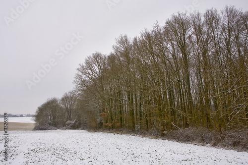 france,île de france,vallée de chevreuse : campagne sous la neig © JONATHAN