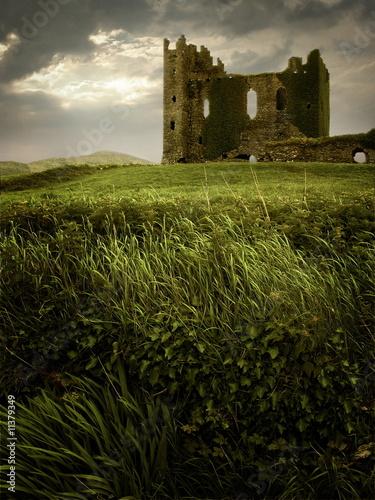 Fotografie, Obraz  Hilltop Castle Ruin