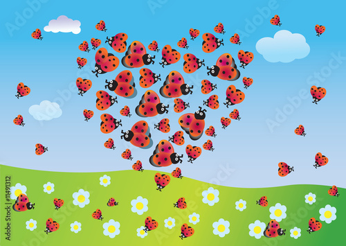 Fotobehang Lieveheersbeestjes Heart of summer from ladybirds