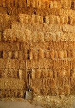 Golden Straw Bales Wall And To...