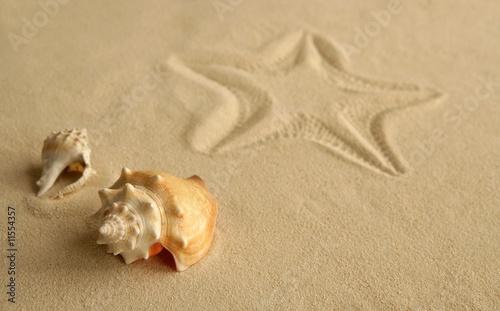 Foto-Leinwand - Starfish footprint over caribbean sand