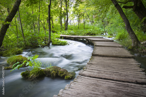Canvas Prints Forest river plitvicka jezera national park
