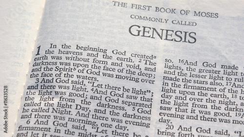 Fotografia, Obraz Genesis