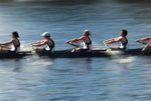 Teamwork, Rowers In A Rowing B...