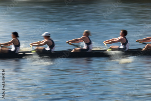 Cuadros en Lienzo Teamwork, rowers in a rowing boat pulling in harmony
