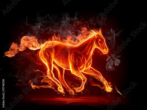 Fototapety, obrazy: Fiery stallion