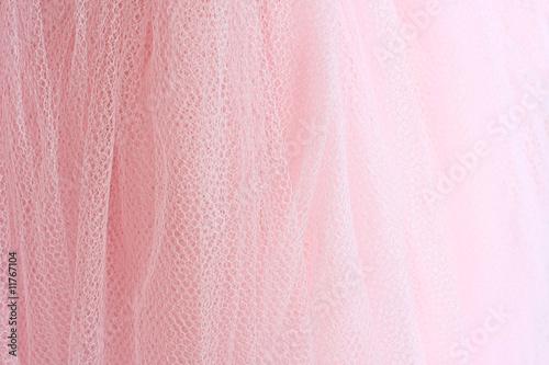 Fotografie, Obraz  The pink tutu.