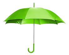 Bright Green Umbrella