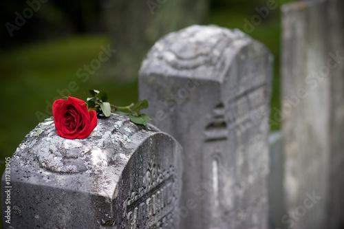 Obraz na płótnie Love and Loss (Angled)