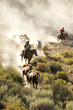 canvas print picture - Two cowboys guiding a line of horses through the desert