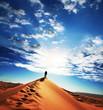 Leinwandbild Motiv Desert