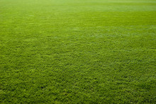 Green Grass Texture Of A Socce...