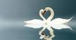 Leinwandbild Motiv Love Swans