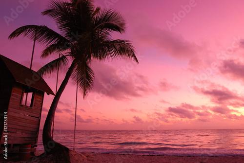 Montage in der Fensternische Rosa Lovey Caribbean sunset