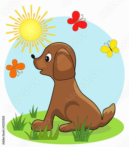 Poster Dogs Dog. Cartoon, vector illustration