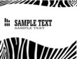 vecror zebra abstract background with text