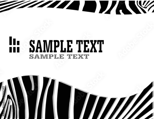 vecror zebra abstract background with text - 12286392