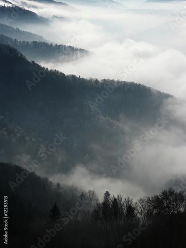 Fototapety, obrazy: Neblige Hügel im Winter