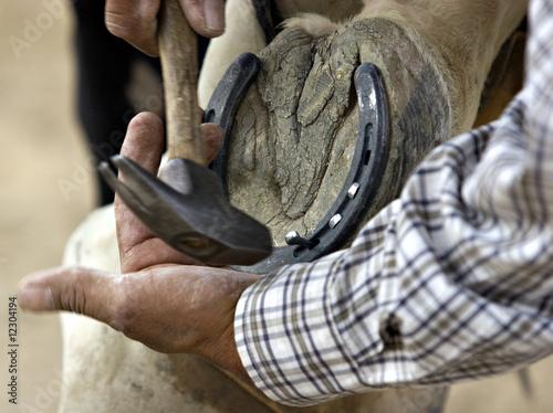 Photo  A coyboy fixes his horse's horseshoe