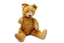Old Teddy Bear Close Up
