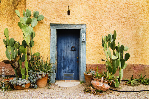 Foto op Canvas Cactus Charming rustin weather worn doorway in hot climate country