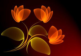 Plakat Transparent flowers