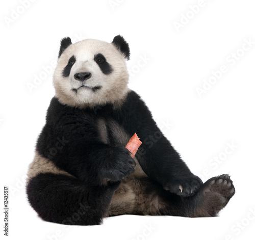 Stickers pour porte Panda Giant Panda (18 months)