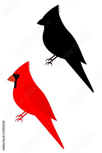 Canvas Print Set of two cardinal birds