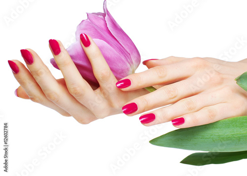 Staande foto Manicure Hands with pink manicure holding tulip
