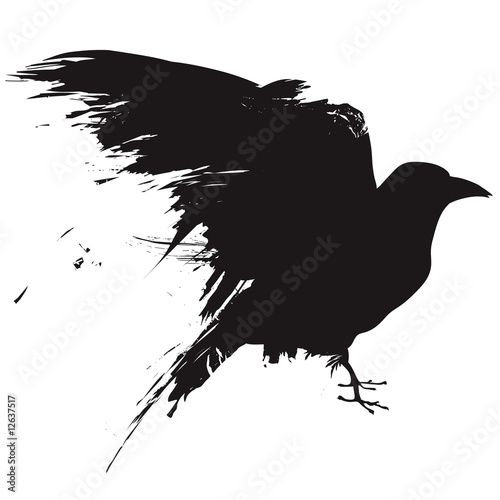 Canvas Print Vector raven or crow in grunge style