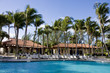 Pool Cabanas and Palms