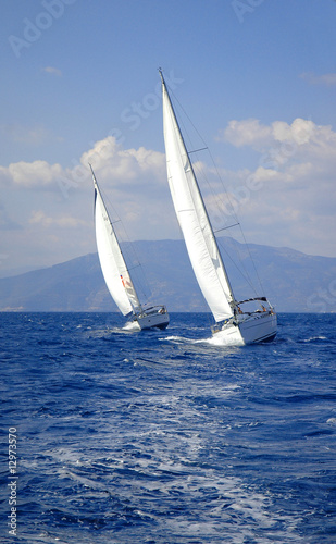Garden Poster two race yacht