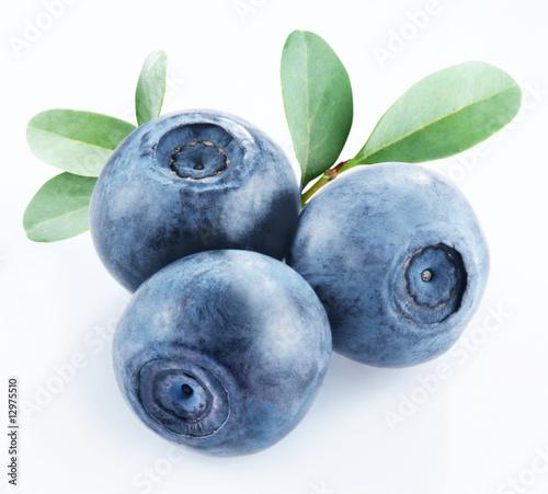 bilberry Fototapeta